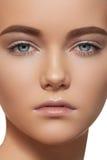 Mulher bonita com composição do dia, sobrancelhas fortes Imagem de Stock Royalty Free