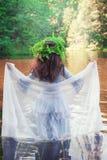 Mulher bonita com o vestido medieval longo que está no rio Imagens de Stock