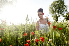 Mulher bonita com ramalhete Fotografia de Stock