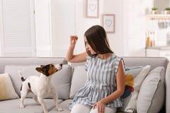 Mulher bonita com seu cão que senta-se no sofá fotos de stock