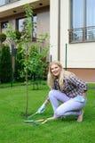 Mulher bonita do jardineiro que planta a árvore de maçã fotografia de stock