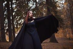 Mulher bonita e misteriosa nova nas madeiras, no casaco preto com capa, na imagem do duende da floresta ou na bruxa fotografia de stock