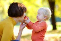Mulher bonita e seu neto pequeno adorável que comem frutos Fotos de Stock