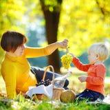 Mulher bonita e seu neto pequeno que têm um piquenique Fotografia de Stock Royalty Free
