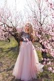 Mulher bonita em um vestido longo, no jardim de pêssegos de florescência imagem de stock royalty free