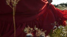 Mulher bonita em um vestido vermelho que anda ao longo de um campo da camomila no slo-mo filme