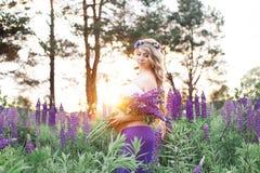 A mulher bonita está estando cercou pelo campo de flores Imagem de Stock