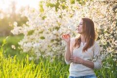 A mulher bonita está sob uma árvore de florescência na grama verde e Imagem de Stock