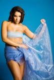 Mulher bonita na seda foto de stock royalty free