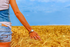 Mulher bonita no campo do centeio no céu azul Imagem de Stock Royalty Free