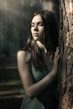 Mulher bonita no cenário da natureza imagem de stock royalty free