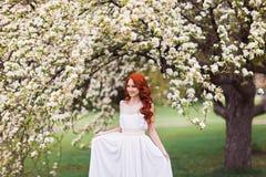 Mulher bonita no parque de florescência fotografia de stock royalty free