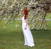 Mulher bonita no parque de florescência fotos de stock