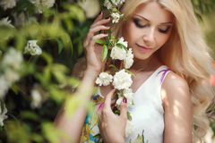 Mulher bonita no parque perto das rosas de florescência de Bush Imagens de Stock Royalty Free