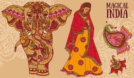 Mulher bonita no saree tradicional, elefante com ornamento do mehendi, paisley ilustração royalty free