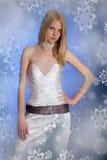 Mulher bonita no vestido Fotos de Stock Royalty Free