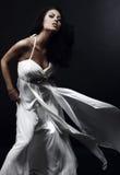 Mulher bonita no vestido do encanto Fotos de Stock Royalty Free