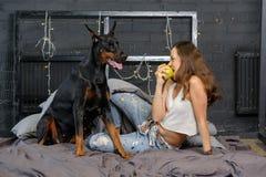 Mulher bonita nova com o cão preto do doberman Imagens de Stock