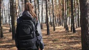 Mulher bonita nova com uma trouxa que anda no tiro de Steadicam da floresta