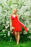 Mulher bonita nova em um vestido vermelho Fotos de Stock Royalty Free