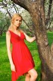 Mulher bonita nova em um vestido vermelho Imagens de Stock Royalty Free