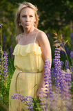Mulher bonita nova no campo do lupine Fotos de Stock