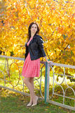 Mulher bonita nova no vestido cor-de-rosa que está no fundo de árvores amarelas no parque do outono Imagem de Stock Royalty Free