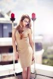 Mulher bonita que está no telhado Imagens de Stock