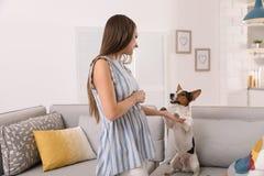 Mulher bonita que joga com seu cão bonito imagens de stock