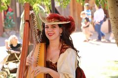 Mulher bonita que joga a harpa Fotos de Stock