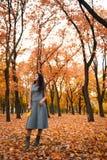 Mulher bonita que levanta no parque do outono perto da árvore grande Paisagem bonita no outono fotos de stock royalty free