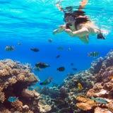 Mulher bonita que mergulha no Mar Vermelho Foto de Stock Royalty Free
