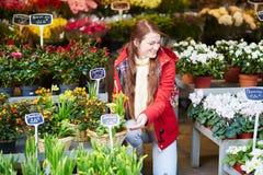 Mulher bonita que seleciona flores frescas no mercado parisiense Fotografia de Stock Royalty Free