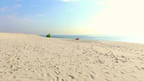 A mulher bonita saudável, nova nos óculos de sol que meditam, esticando, ioga praticando na praia do mar, no nascer do sol, faz filme
