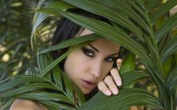 Mulher bonita 'sexy' que esconde atrás das folhas de palmeira St bonito fotos de stock royalty free