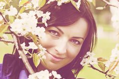 Mulher bonita sob a árvore de florescência Imagem de Stock