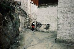 mulher budista tibetana do peregrino que faz sua caminhada em torno do monastério fotos de stock