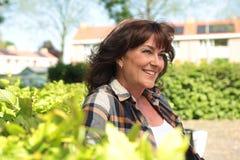 Mulher caucasiano madura feliz bonita fora no parque imagens de stock royalty free