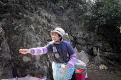 A mulher chinesa idosa vende a tangerina Fotos de Stock