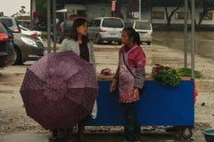 Mulher chinesa - vendedor e comprador no mercado rural Imagem de Stock Royalty Free