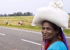 Mulher cingalesa Imagens de Stock