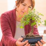 Mulher com árvore dos bonsais fotografia de stock royalty free