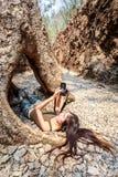 A mulher com câmera encontra-se para baixo no furo da árvore Imagens de Stock