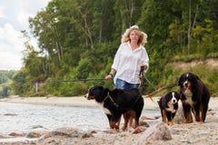 Mulher com cães Imagem de Stock