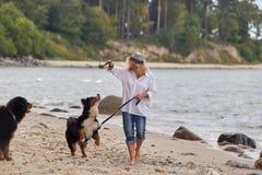 Mulher com cães Imagem de Stock Royalty Free