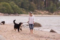 Mulher com cães Fotos de Stock