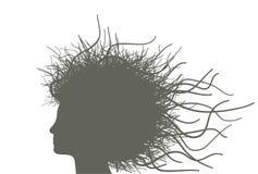 Mulher com cabelo das filiais Fotografia de Stock