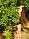 Mulher com cabelo longo na natureza Imagens de Stock Royalty Free