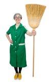 Mulher com escova arrebatadora Imagens de Stock Royalty Free