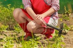 Mulher com a ferramenta de jardinagem que trabalha no jardim Foto de Stock